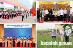 Chỉ đạo, điều hành nổi bật của UBND tỉnh, Chủ tịch UBND tỉnh trong tháng 8/2019