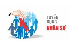 Công ty TNHH VDS Việt Nam tuyển dụng