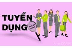 CÔNG TY TNHH NC LED tuyển dụng