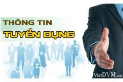 Công ty TNHH V-Honest tuyển dụng Kế toán tổng hợp