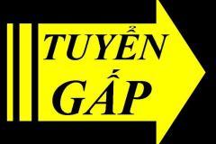 Công ty TNHH Toyo Ink Compounds Việt Nam tuyển Nhân viên QC, Công nhân sản xuất-  Gấp !